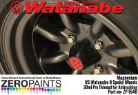 Magnesium Paint for RS Watanabe 8 Spoke Wheels 30ml